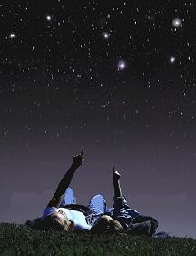comptant estels
