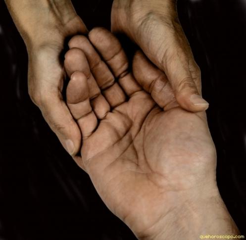 les línies de la mà
